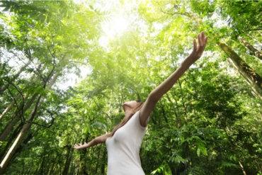 Inteligencia naturalista: ¿en qué consiste y para qué sirve?