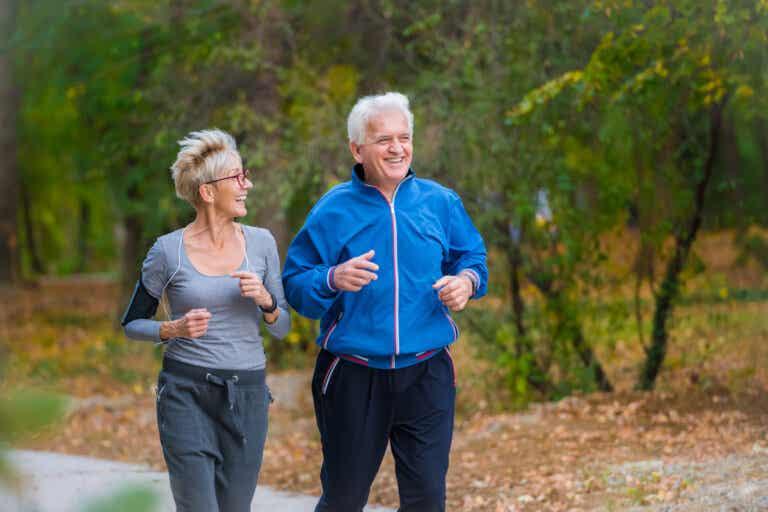 El envejecimiento altera nuestros ritmos circadianos