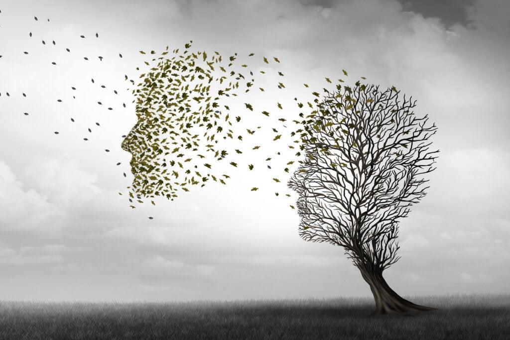 Las fases del alzhéimer
