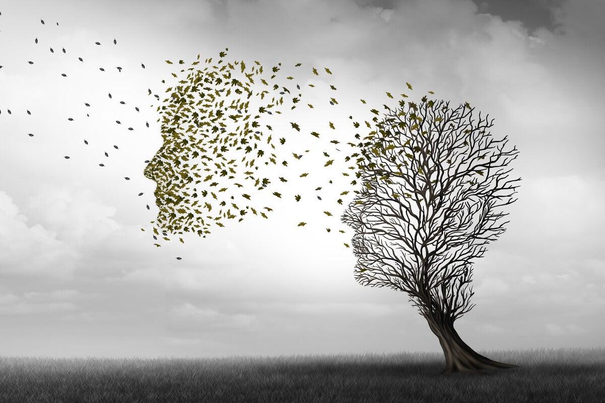 Árbol con forma de cabeza humana simbolizando cómo liberarse del dolor de cabeza
