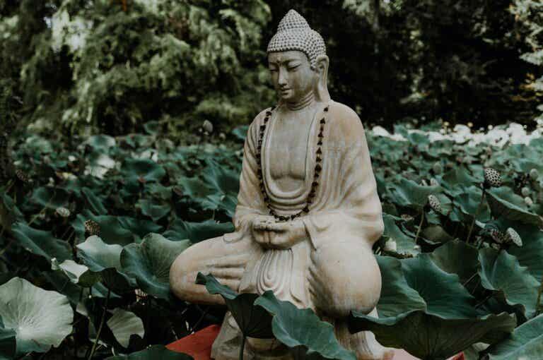 """Lecciones del """"Dhammapada"""" de Buda para enfocar tu mente"""