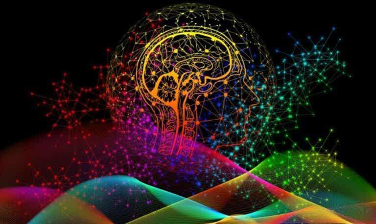 Las huellas dactilares del cerebro ¿qué son? ¿qué importancia tienen?