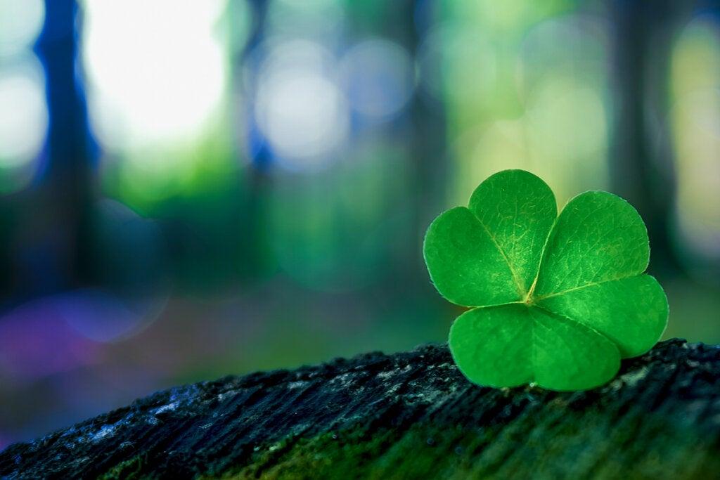 ¿Cómo puede afectarte creer en la suerte?