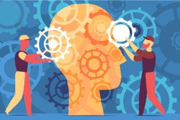 Por una educación centrada en el cerebro y no en los datos