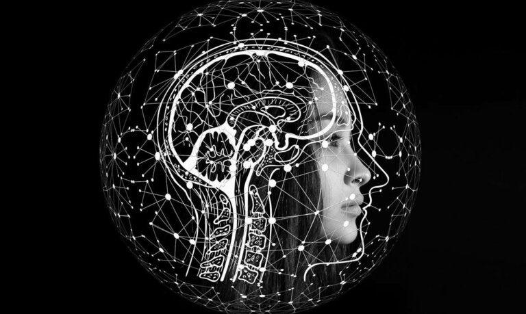 La teoría neuromatriz del dolor: ¿en qué consiste?
