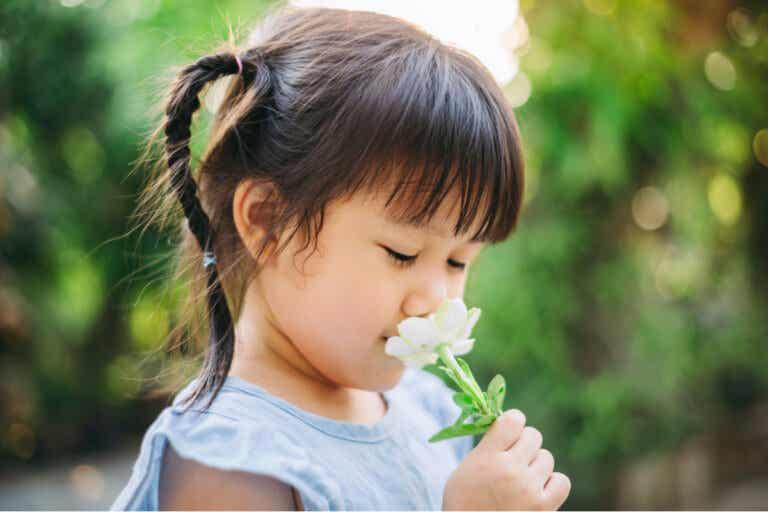 Ver, pensar y hablar con calma: estrategia de Nietzsche para los niños