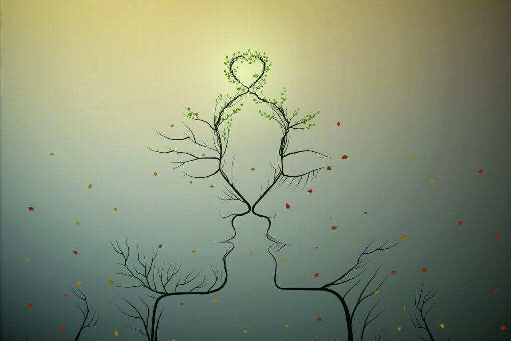 ¿Cuáles son las diferencias entre atracción, enamoramiento y amor?