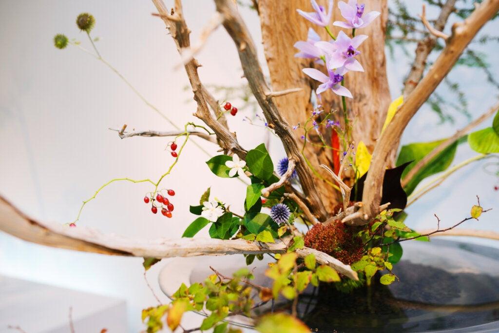 Ikebana: el arte floral japonés para combatir el estrés y ser más feliz