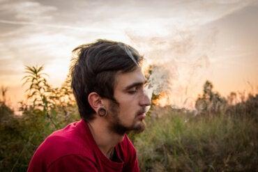 ¿Cómo dejar de fumar porros?