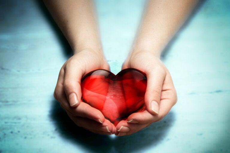 La importante diferencia entre sentir pena y sentir compasión
