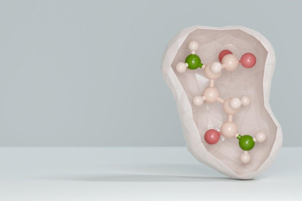 Glutamina: características y funciones