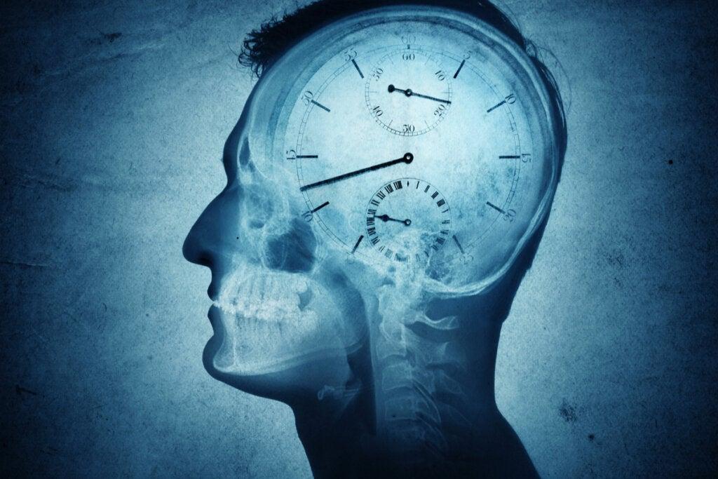 Cronobiología: ¿qué es y cómo nos puede afectar?