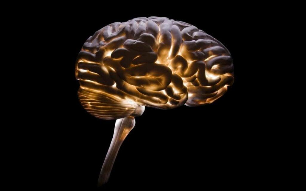 Neurocriminología: una disciplina cada vez más necesaria