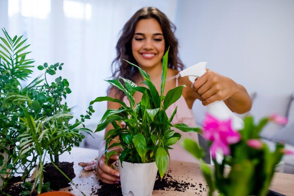 7 beneficios psicológicos de tener plantas
