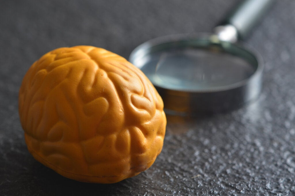 Yellow brain with magnifying glass