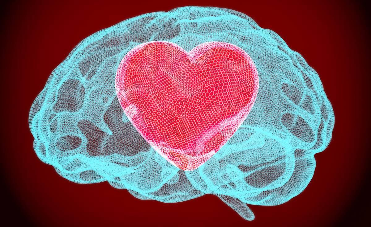 Neurobiología del perdón: así cambia el cerebro cuando perdonamos