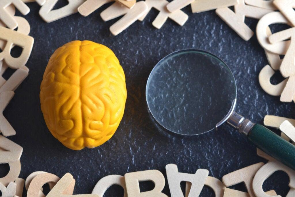 Cerebro y una lupa rodeados de letras