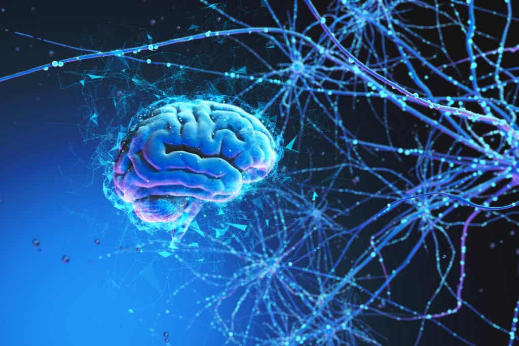 Cerebro con redes neuronales simbolizando la relación del cerebro y danza
