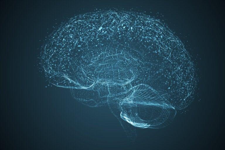 El cerebro se apaga 10 minutos después de la muerte del cuerpo