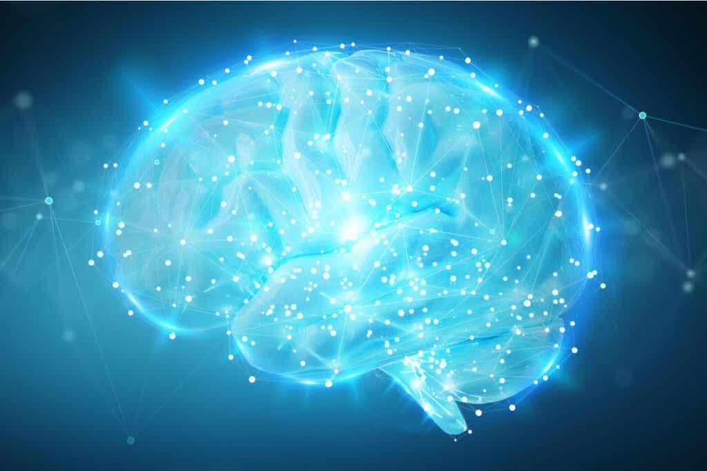 Cerebro iluminado