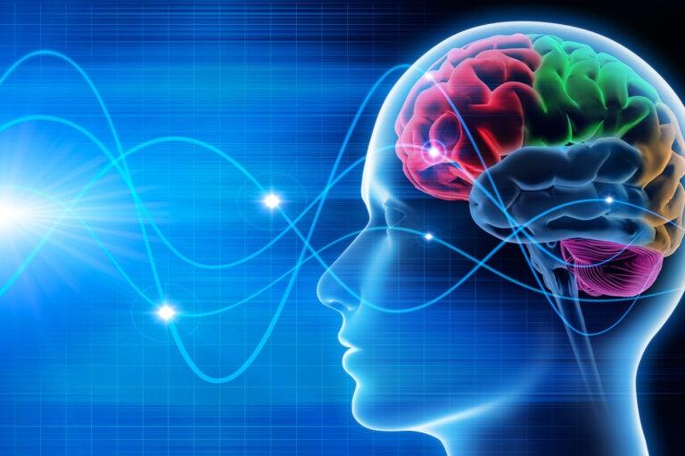 ¿Qué es la psicofísica?