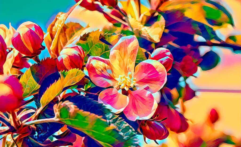 flores coloridas para simbolizar Cómo es el cerebro sinestésico