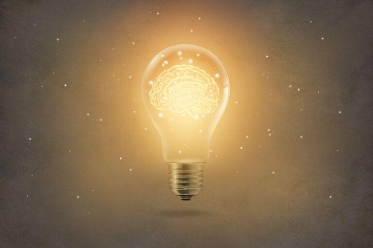Aprendizaje por insight ¿en qué consiste?