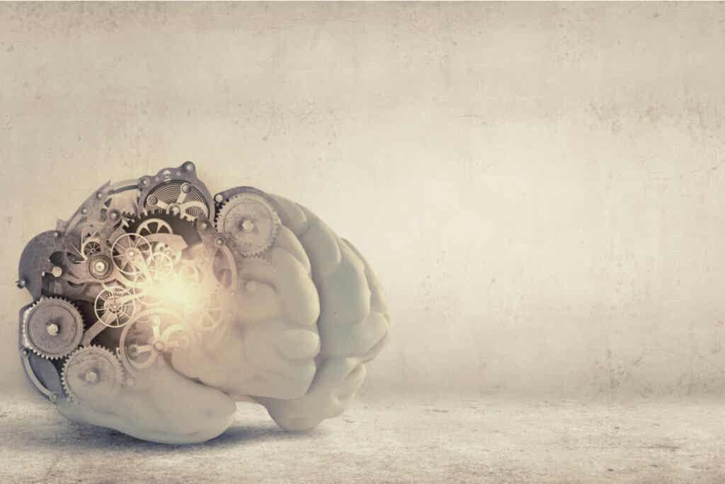 Cerebro con mecanismos