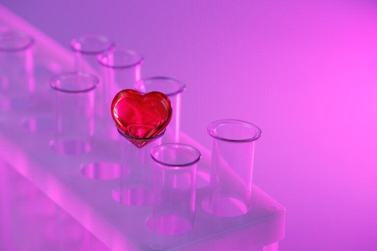 El ADN y las decisiones amorosas, ¿cómo se relacionan?