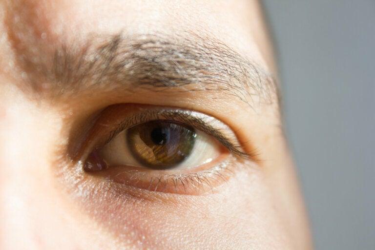 7 datos curiosos sobre los sentidos