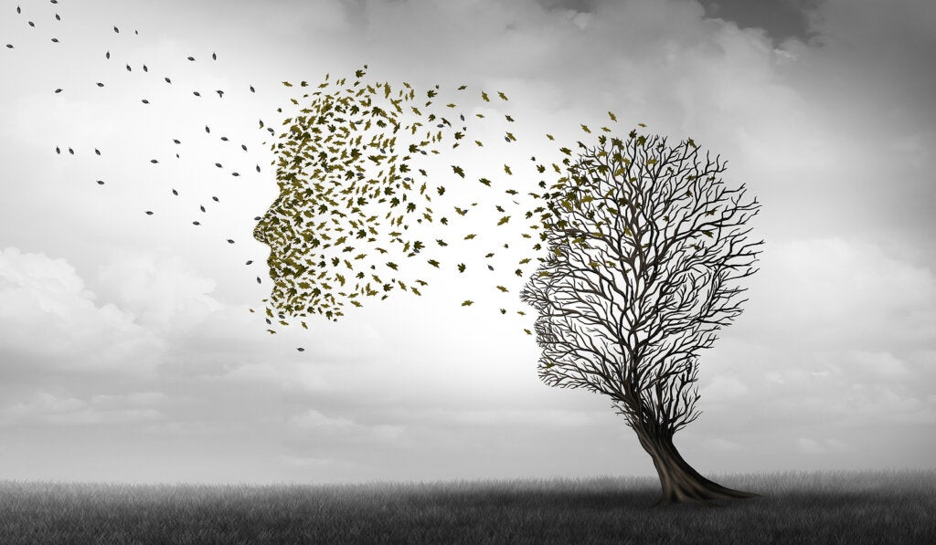 Diferencias entre alzhéimer y demencia