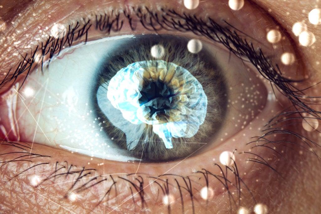 El efecto Ganzfeld: una mirada a nuestra mente