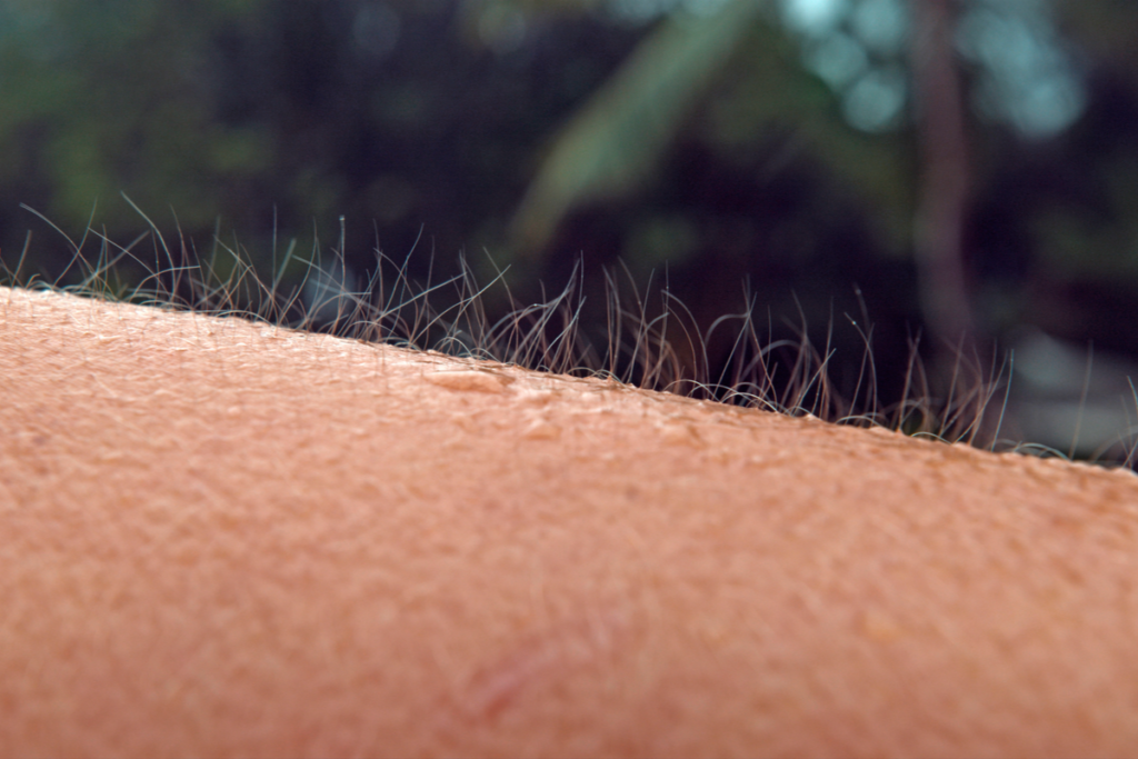¿Qué son los orgasmos de piel?