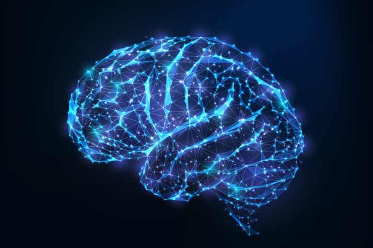Androginia cerebral: ¿qué es y cuáles son sus beneficios?