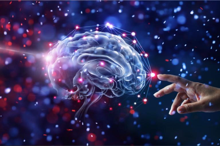 Emociones primordiales o instintivas, el origen de nuestra consciencia