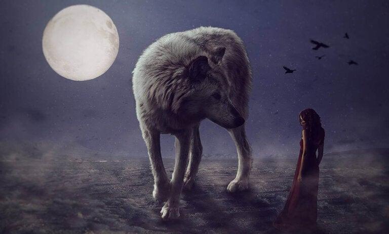 Cuando las tristezas nos persiguen como lobos feroces