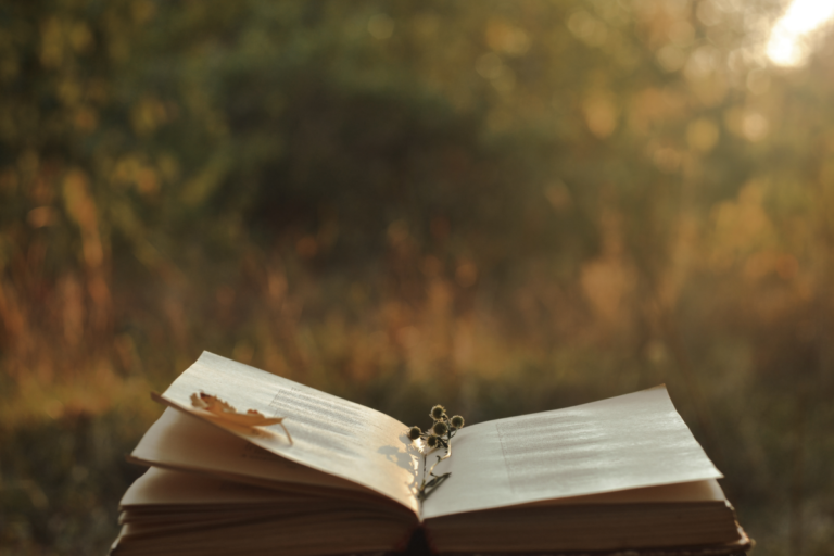 ¿Por qué se lee cada vez menos poesía?