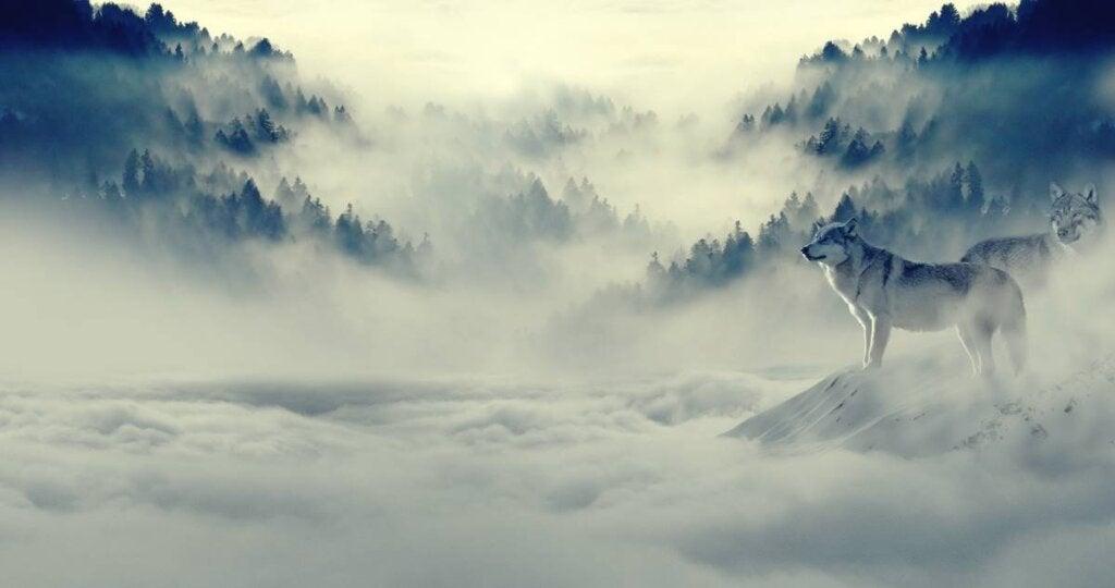 escena de montaña con niebla para simbolizar cuando las tristezas nos persiguen como lobos feroces