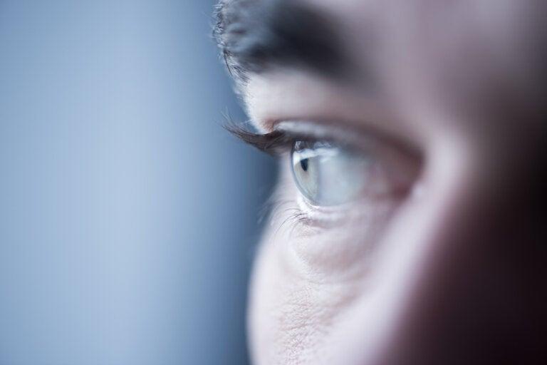 Personas hábiles en reconocer rostros, una habilidad especial