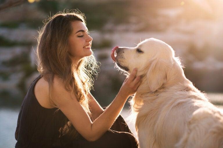 Tu perro te entiende cuando le hablas, según estudio