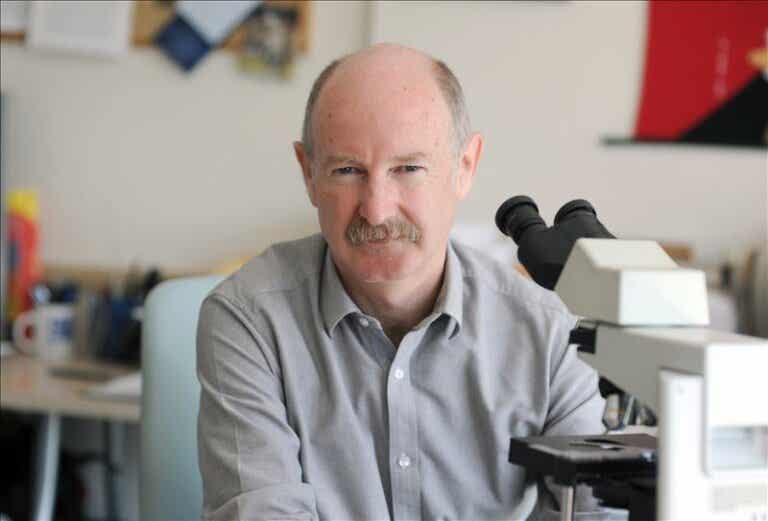 Las fascinantes ideas del neurobiólogo Rafael Yuste sobre el cerebro